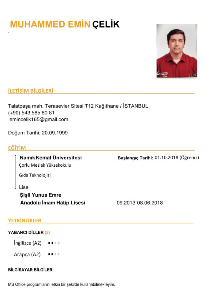 Muhammed Emin Çelik CV